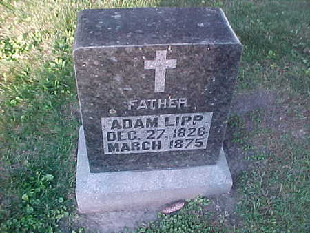 LIPP, ADAM - Winneshiek County, Iowa | ADAM LIPP