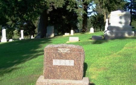 RELF, JAMES FAMILY STONE - Winneshiek County, Iowa | JAMES FAMILY STONE RELF