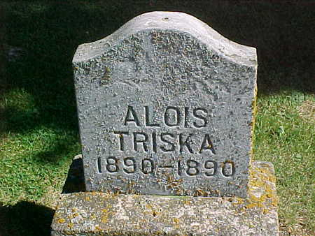 TRISKA, ALOIS - Winneshiek County, Iowa | ALOIS TRISKA