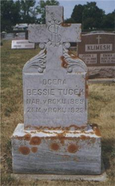 TUCEK, BESSIE - Winneshiek County, Iowa | BESSIE TUCEK