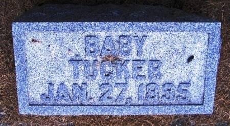 TUCKER, BABY - Winneshiek County, Iowa | BABY TUCKER