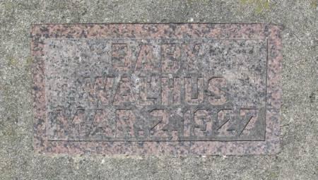 WALHUS, BABY - Winneshiek County, Iowa   BABY WALHUS