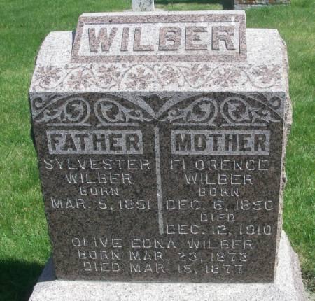 WILBER, SYLVESTER - Winneshiek County, Iowa | SYLVESTER WILBER