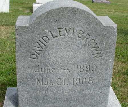 BROWN, DAVID LEVI - Woodbury County, Iowa | DAVID LEVI BROWN