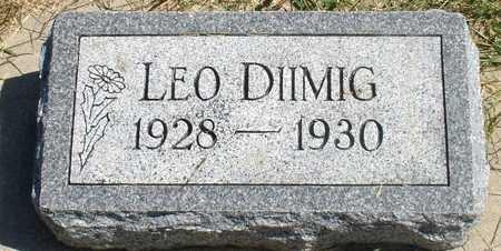 DIIMIG, LEO - Woodbury County, Iowa | LEO DIIMIG