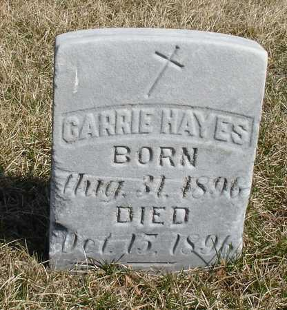 HAYES, CARRIE - Woodbury County, Iowa | CARRIE HAYES