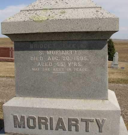 MORIARTY, BRIDGET - Woodbury County, Iowa | BRIDGET MORIARTY