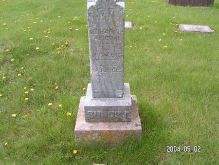 HANSON, JOHAN O. - Worth County, Iowa | JOHAN O. HANSON