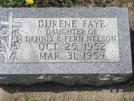 NELSON, DUREEN FAYE - Worth County, Iowa | DUREEN FAYE NELSON