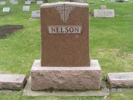 NELSON, (FAMILY STONE) - Worth County, Iowa | (FAMILY STONE) NELSON